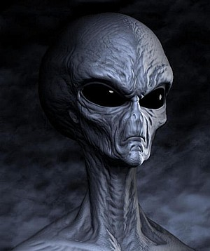 Ufo Ufology Alien Species