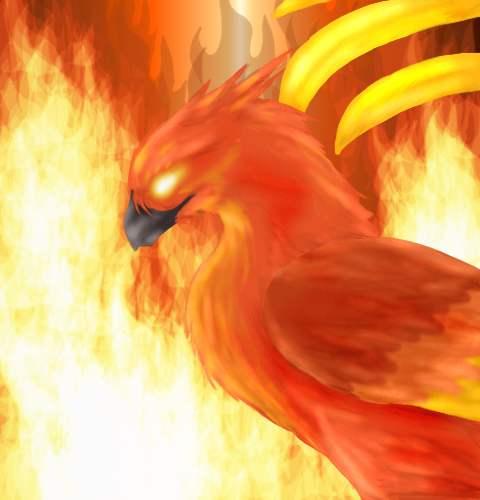 phoenix fire bird art exhibition gallery fnix madr galria fire bird 480x500